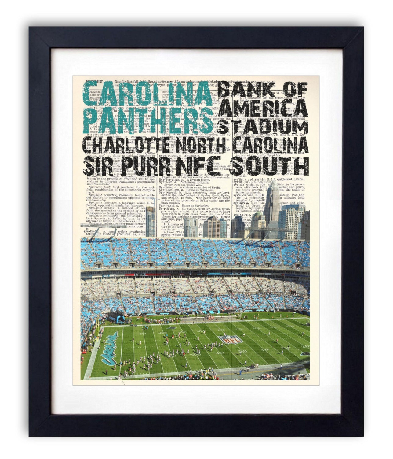 panther stadium coloring pages - photo#12