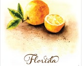 Florida Fresh Oranges watercolored and full of warmth. Perfect to brighten up a cold kitchen!