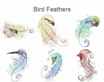 Bird Feathers Machine Embroidery Designs Instant Download 4x4 5x5 6x6 hoop 10 designs APE2091