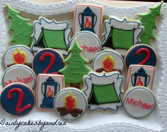1 dozen camping theme decorated sugar cookies!