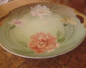 Z.S. and Co. Royal Munich Bavarian Hand Painted Carnation Double Handled Cake Plate - Decorative Wall or Curio Piece