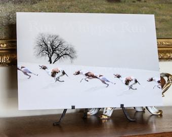 Whippet Winter Run Art (Z)