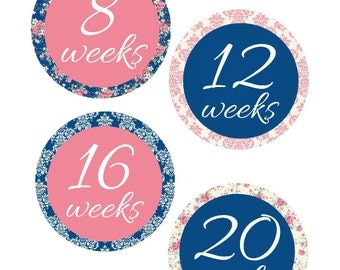 Weekly Pregnancy Stickers, Pregnancy Announcement, Pregnancy Belly Stickers, Pregnancy Photo Prop, Maternity Stickers, P20