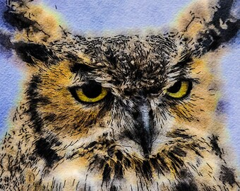 Tufted Eared Owl: Photo Watercolor Study of this Wise and Curious Bird