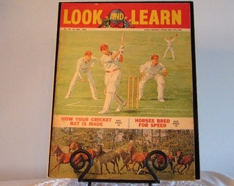 Look and Learn Children's Magazine, How Your Cricket Bat is Made, Horses Bred for Speed, Books Movies and Music