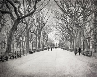 New York Photography, Black and White, Central Park, Trees, Pathway, Winter, Landscape Photo, Nature, Fine Art Print, Wall Art, Home Decor