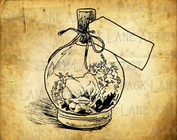 Line Art Etsy : Items similar to vintage bottle terrarium clipart