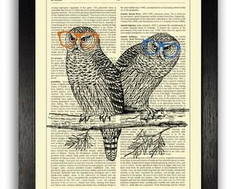Funny owl Etsy