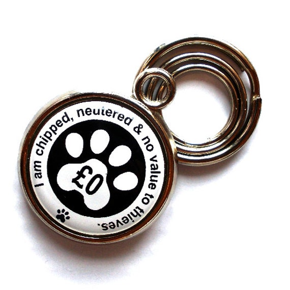 items similar to anti theft pet id tag scratch proof. Black Bedroom Furniture Sets. Home Design Ideas