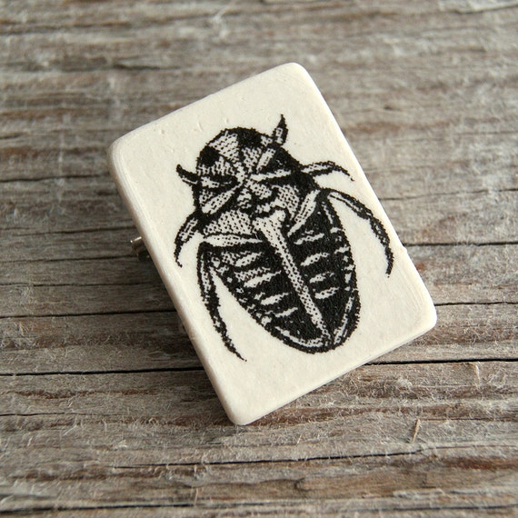 Insect print semi porcelain brooch