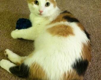 Catnip Toy - Hand Made Crochet Ball
