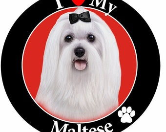 I Love My Maltese Car Magnet With Realistic Looking Maltese Photograph In The Center