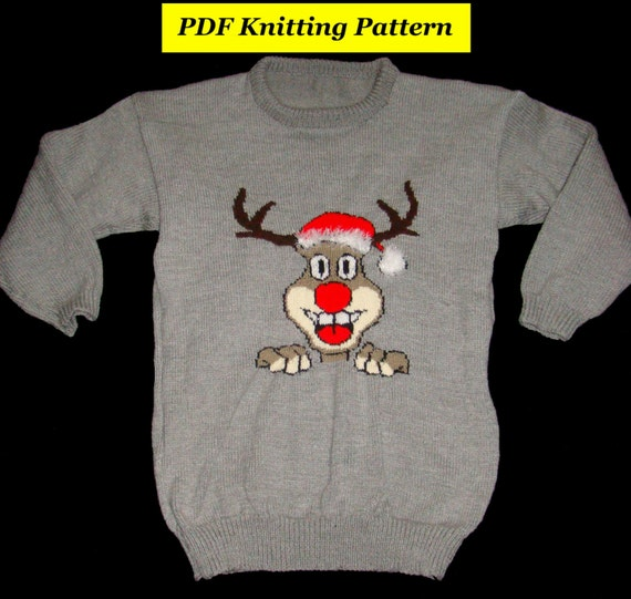 Childrens & Adults Christmas Rudolph Reindeer Jumper / Sweater