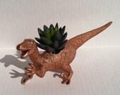 Bronze Dinosaur Planter for Succulent Plants Fun Office Decor