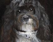 Havanese 10x10  (Fine Art Print not a real Dog)