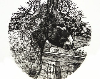 Donkey Print - Original Hand Carved and Printed Engraving - Donkey Art