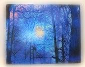 Winter sun rising, 16x20 inches, wood mounted, mixed media photograph, art, original, nature decor, Wall art