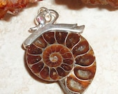 Fossil Ammonite Pendant with Art Deco Style Swan Bail