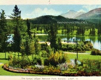 1950s Postcard. The Lodge, Jasper National Park, Canadian Rockies, Alberta, Canada.
