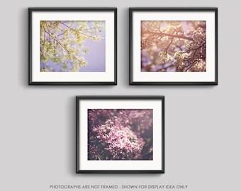 Spring Flowers Photography Set, Save 15%, Photo Set, Print Set, Flower Photography, Floral, Spring, Nature Photography, Botanical, Pastel