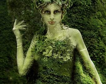 HedgeCreek Dryad Mythic Fantasy art print by Susan Schroder
