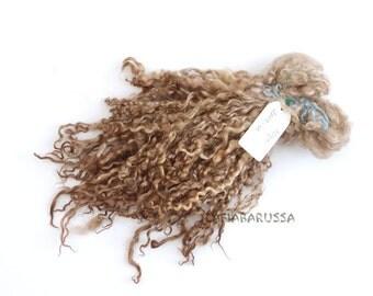 Teeswater lock long 9/10 in Curly lock 1,7 oz  brown Doll Hair - Blythe,  Art Dolls, waldorf, reborn, bjd, 2809