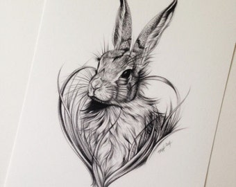 Rabbit Print - Cute Wild Rabbit - Limited Edition Giclée Print -Rabbits and Hares.
