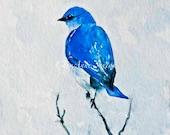"""Bluebird of Happiness """"Out on a Limb' Art on paper Sweet little wild bluebird sitting high treetops ORIGINAL WaterColour 5x7 blank card"""
