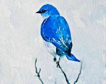 "Bluebird of Happiness ""Out on a Limb' Art Print  Sweet little wild bluebird perch high treetop WaterColor Giclee Print diff sizes"