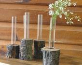 apple branch and glass flower vase