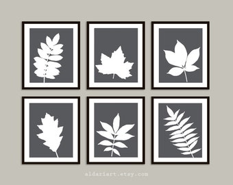 Modern Botanical Art Print Set of Six - Charcoal Grey - Modern Home Decor - Wall Gallery