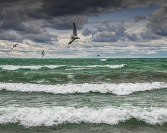 Gulls Flying over the Waves in Sturgeon Bay on the Lake Michigan Shore by Wilderness Park in Michigan No.8722 A Seascape Photograph