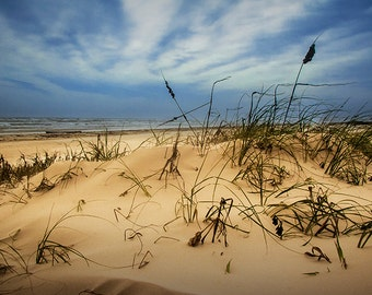 Sand Dune with Beach Grass on Padre Island National Seashore in Texas on the Gulf of Mexico No.13882 A Fine Art Seascape Photograph