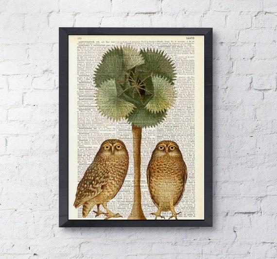 Summer Sale Art print Owls and the palm tree Dictionary wall art home decor, wall hanging  Owl wall art, Owl deco ANI017