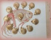 Mini Scallop Shells ( 6 pc)