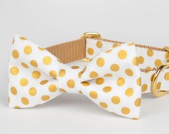 Crew LaLa Gold Dot Bow Tie Dog Collar