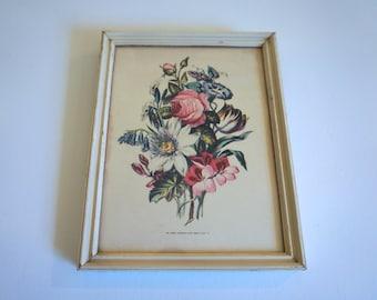 Vintage Framed Floral Lithograph Paul Jerrard