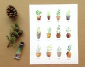 Fresh Herbs print - Garden herbs watercolor illustration - Food print - Green Modern French Kitchen Decor - 8x10 giclee print