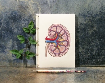Kidney Anatomy Journal. Embroidered Notebook. Medical Art. Anatomical Notebook. Science Art. Anatomy Journal. Gift for Doctor. Stitch Art
