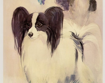 Vintage English Toy SPANIEL and PAPILLON Dog Print Vintage Dog Art Cottage Home Decor Gallery Wall Art Gift for Dog Lover Gift 2658