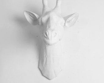 White Giraffe Head Wall Mount: The Geronimo by White Faux Taxidermy - Large White Resin Giraffe Head - Resin Safari Animal Head Decor