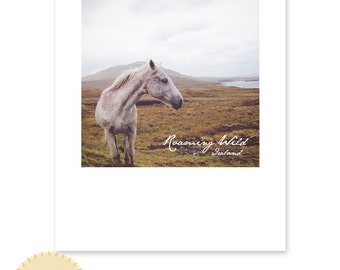 Roaming Wild / Wild horse in Ireland / Photography Print / Clifden, Ireland / typography / sizing options 4x6, 5x7 or 8x10