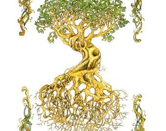 "Celtic Tree of Life 11""x14"" Signed Print"