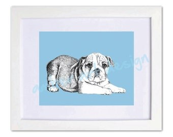 "Giclee Fine Art Print. ""Hand drawn Bulldog"". Sizes available 5x7, 8x10, 11x14, 13x19. Choose a background colour"