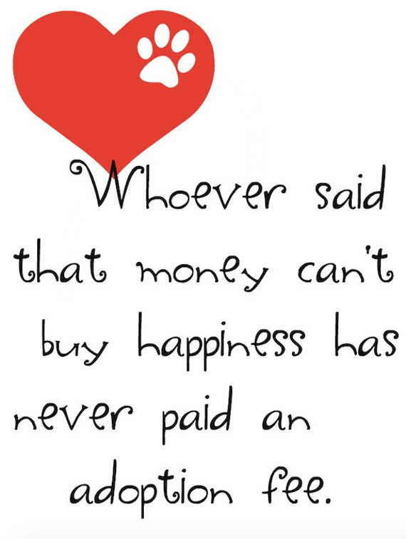 does money buy happiness essay does money buy happiness essay