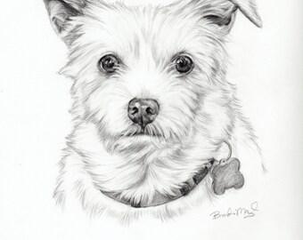 Custom Dog Portrait  -Dog drawing- Personalized Pet Portrait-Original dog picture -White dog - dog illustration-pet art-pet sympathy