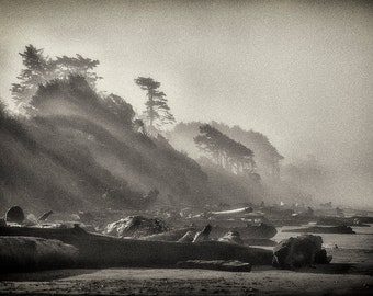 Beach Photography, Driftwood, Sunrise, Nature, Landscape, Fine Art, Black and White Photography, Wall Art, Home Decor, Pacific Northwest Zen