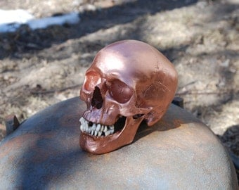 Copper Human Skull Replica with lower mandible Full Size