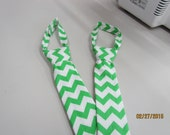 ON SALE Large Little Man Tie Boy Toddler Green and White Chevron