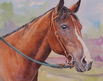 "Custom Horse Portrait Watercolor  11"" X 14"""